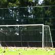 goal 224