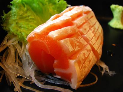 Salmon Fish 432