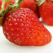 Strawberry 321
