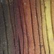 Texture 476