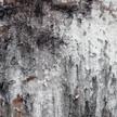 Rock Texture 932