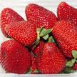 Strawberry 726