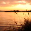 Sunset 713
