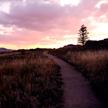 Sunset 768
