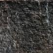 Texture 895