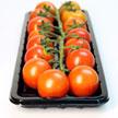 Tomato 797