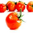 Tomato 937